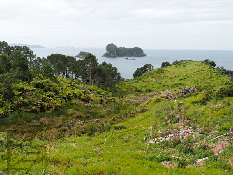 Widok na rezerwat morski