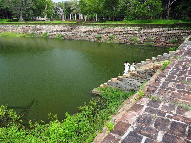 Sadzawka dla słoni, okolice dawnego pałacu