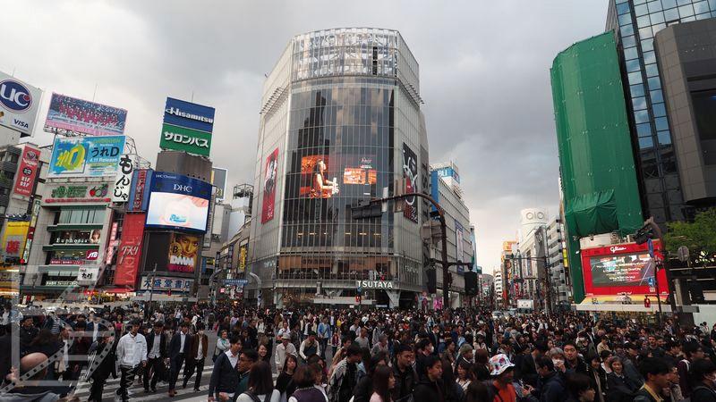 Skrzyżowanie Shibuya w Tokio
