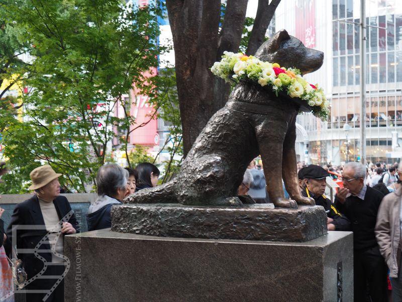 Pomnik psa Hachikō