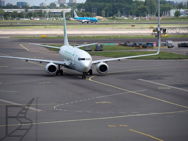 Transavia na lotnisku w Amsterdamie