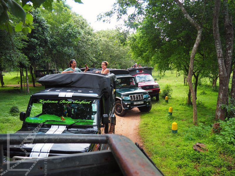 Safari w Hurulu