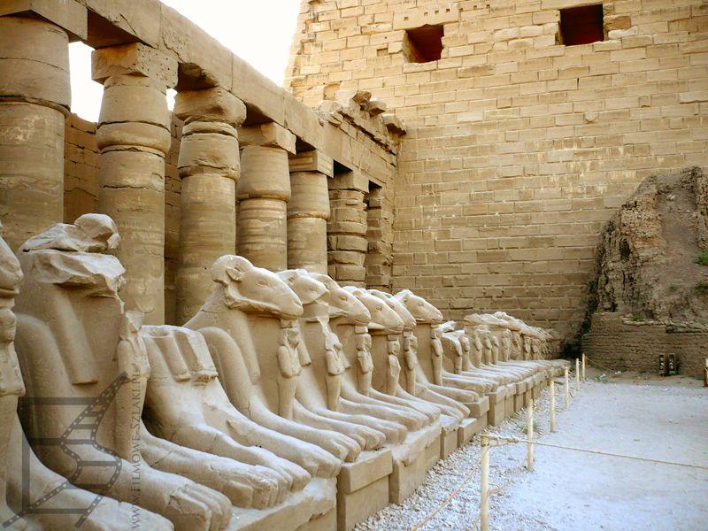 Aleja sfinksów prowadząca do Karnaku