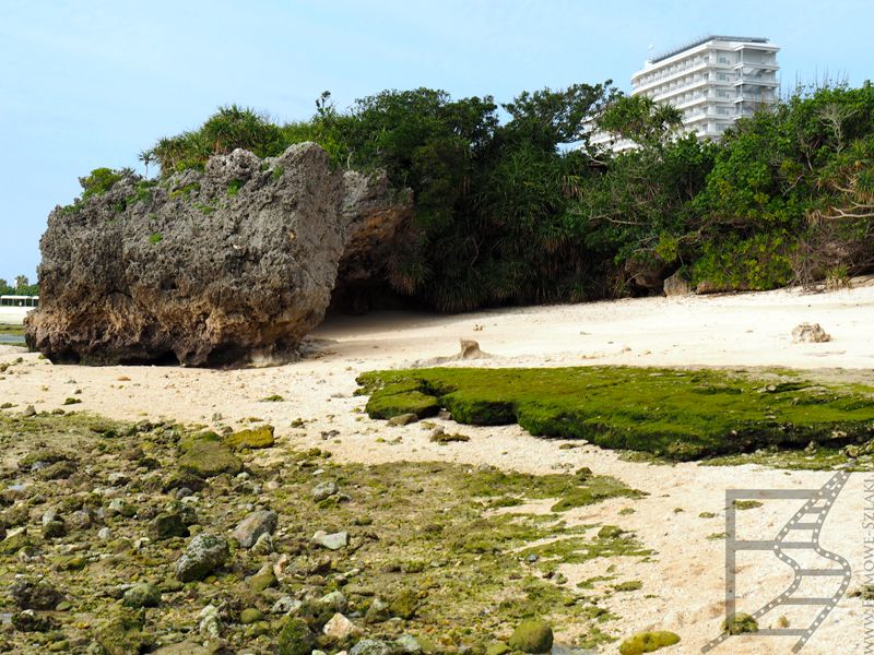 Naturalne plaże
