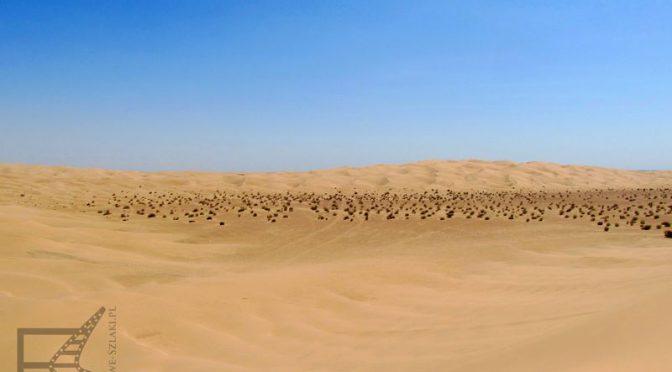 Pustynia Yuma: Buttercup Valley – Diuna i Tatooine