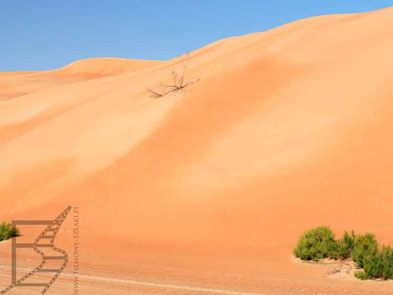 Wydmy, pustynia Liwa