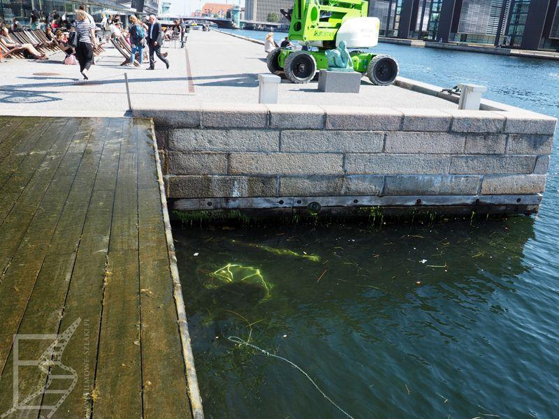 To nie rower wrzucony do kanału. To rzeźba. Kopenhaga może zaskoczyć wodnymi atrakcjami