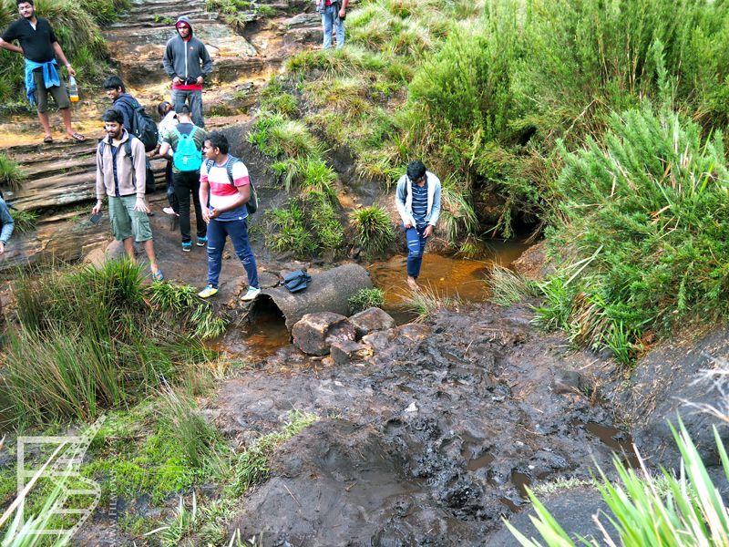 Turyści na Płaskowyżu Hortona