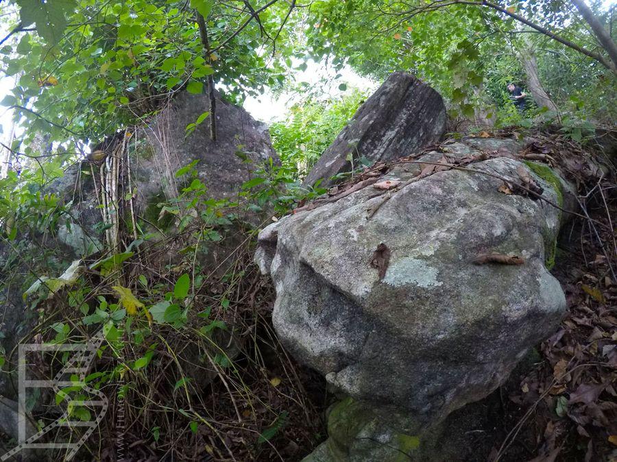 Głazy na dawnej plantacji