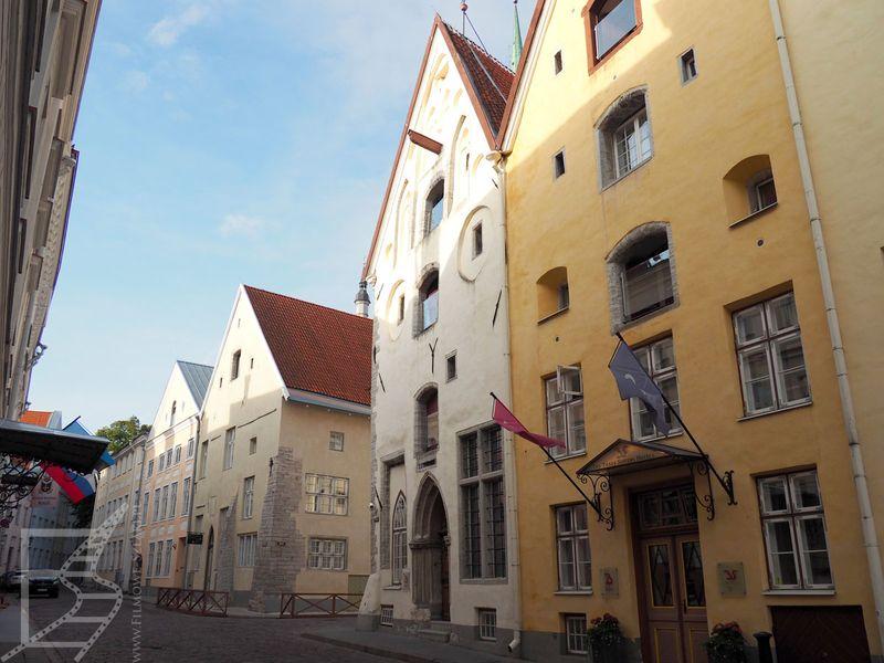Słynne Trzy Siostry (Tallinn, Estonia)