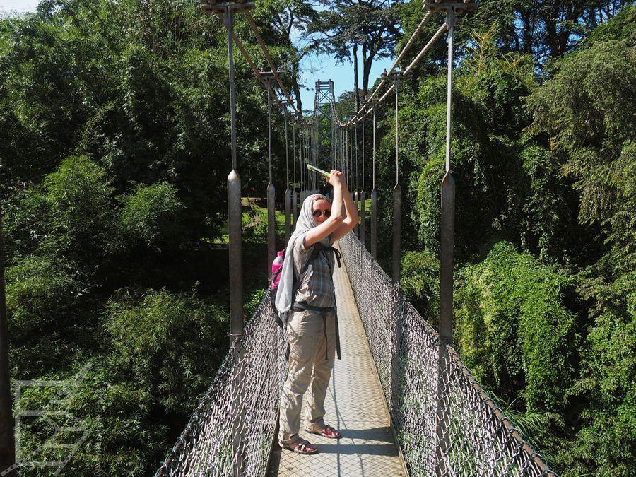 Wiszący most w Peradeniya