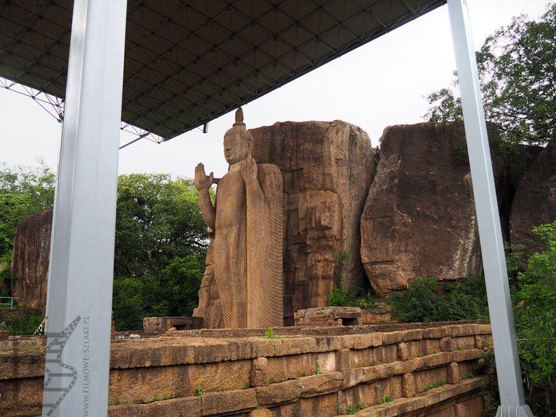 Posąg Buddy w klasztorze Aukana na Sri Lance