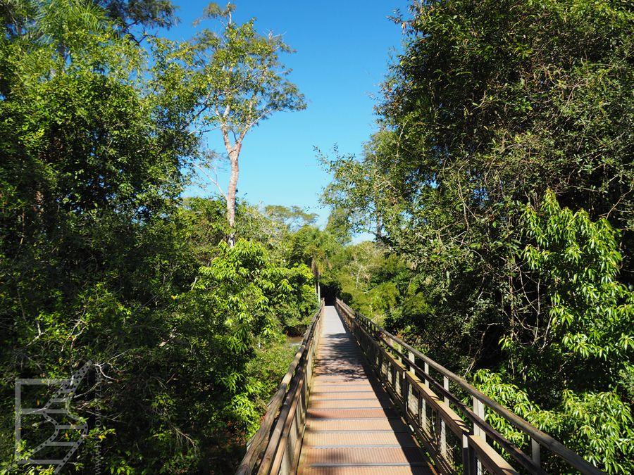 Szlak po stronie argentyńskiej (Iguazu)