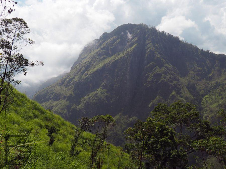 Okolice Ella to doskonałe miejsce na górskie wędrówki