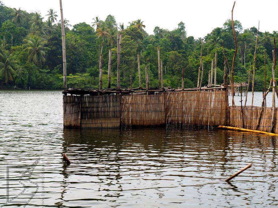Łowisko w okolicy Balapitiya