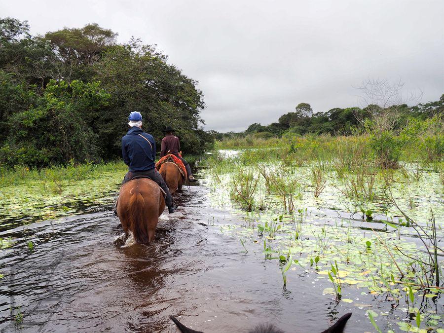 Na koniu przez Pantanal
