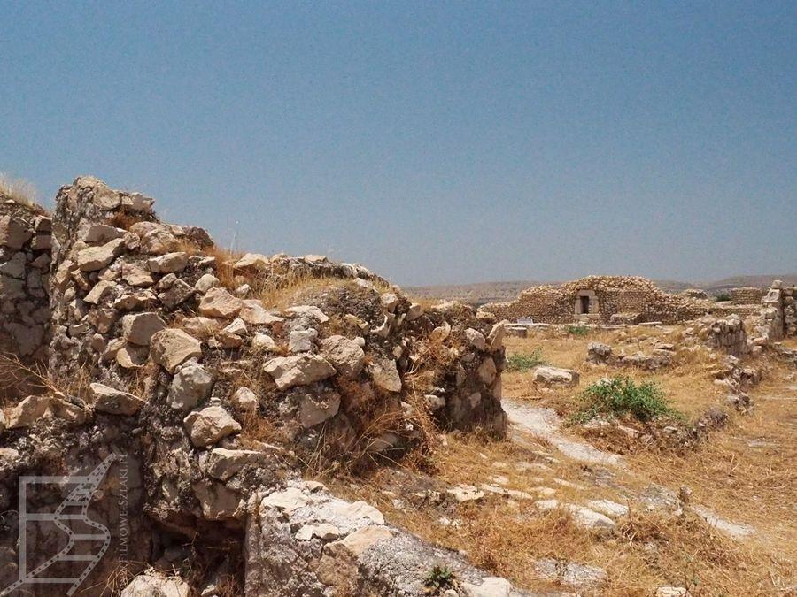 Ruiny Biszapur