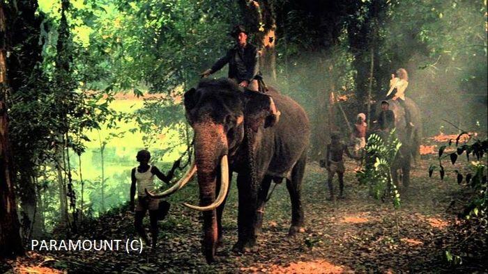"""Słonie i okolice Pinawalli wykorzystano w filmie """"Indiana Jones i świątynia zagłady"""""""
