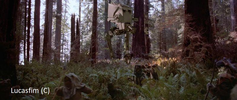 """Las na Endorze w """"Powrocie Jedi"""" (Redwood)"""