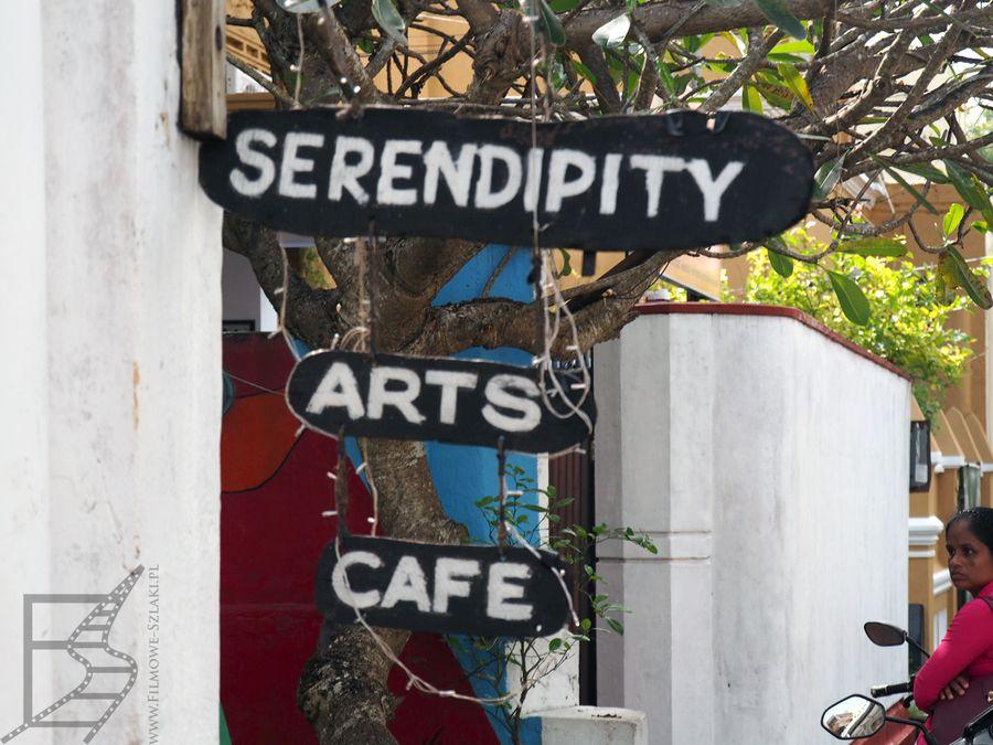 Znają i pamiętają znaczenie słowa Serenpidity