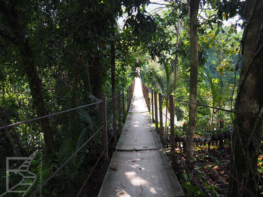 Wiszący most w Kitulgali