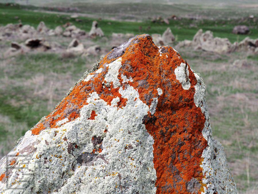 Kamienie dziś są trochę porośnięte porostami