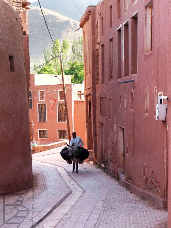 Mężczyzna na osiołku (Abjane, Iran)
