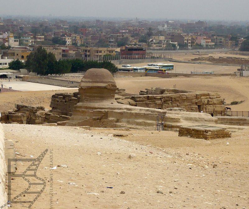 Sfinks i Giza w tle