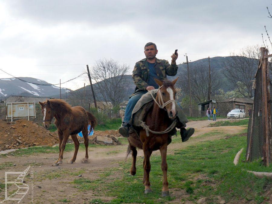 Konie w wiosce Tatew