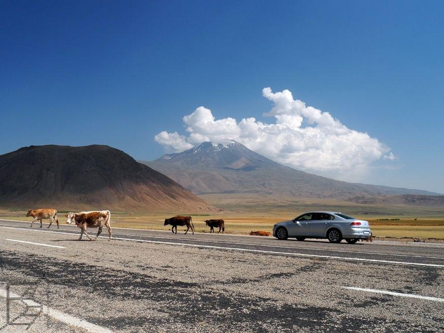Wystarczy zatrzymać się przy drodze, by podziwiać świętą górę Ormian