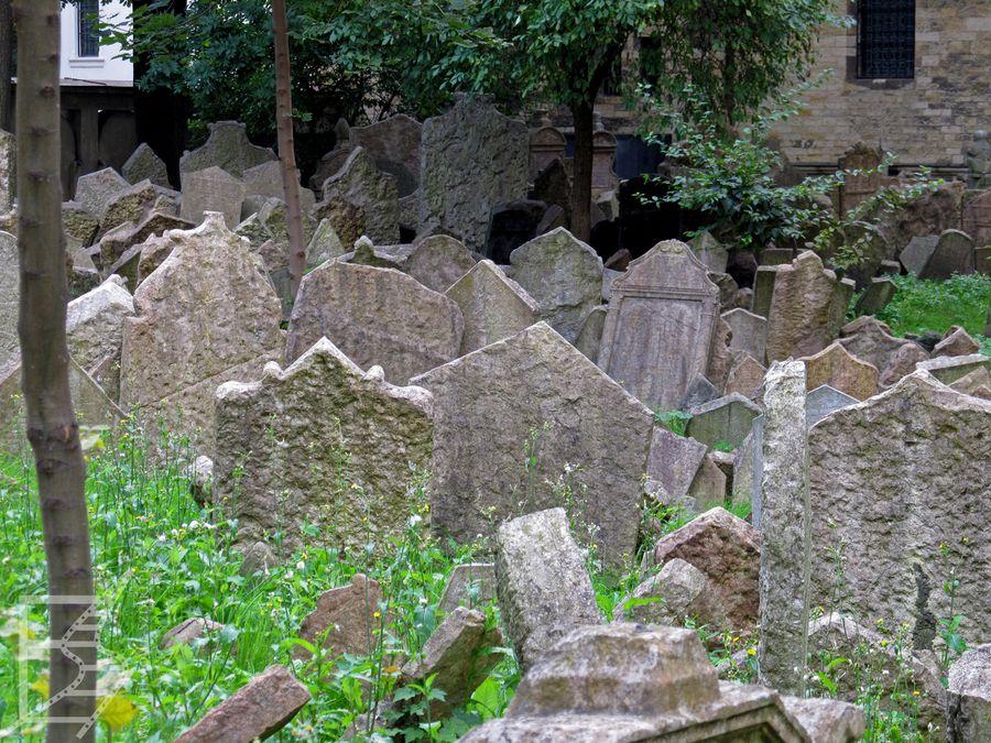 Cmentarz na Jozefowie (Praga)